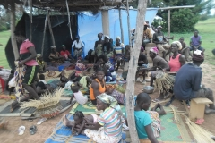 Village Saving and Loans